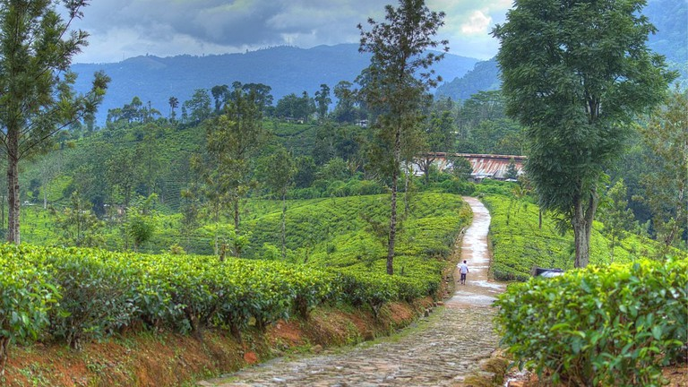 Top Destination in Sri Lanka
